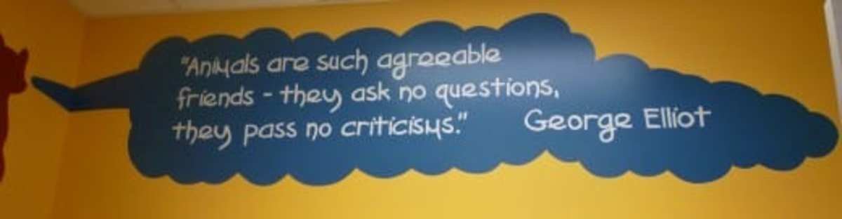 One of many quotes painted on the walls at CAP.