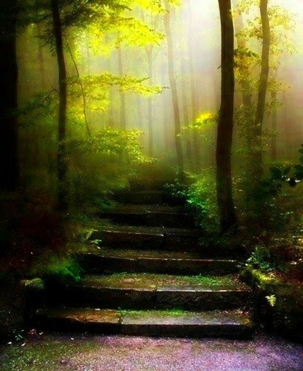 Even the smallest steps ensure you are not giving over your dreams to stagnation and pain.