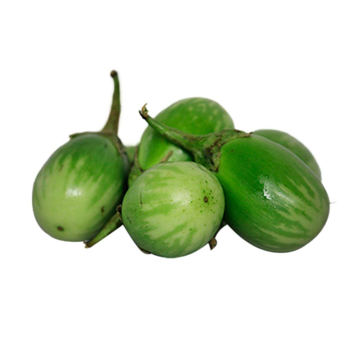 round-bottomed green brinjal