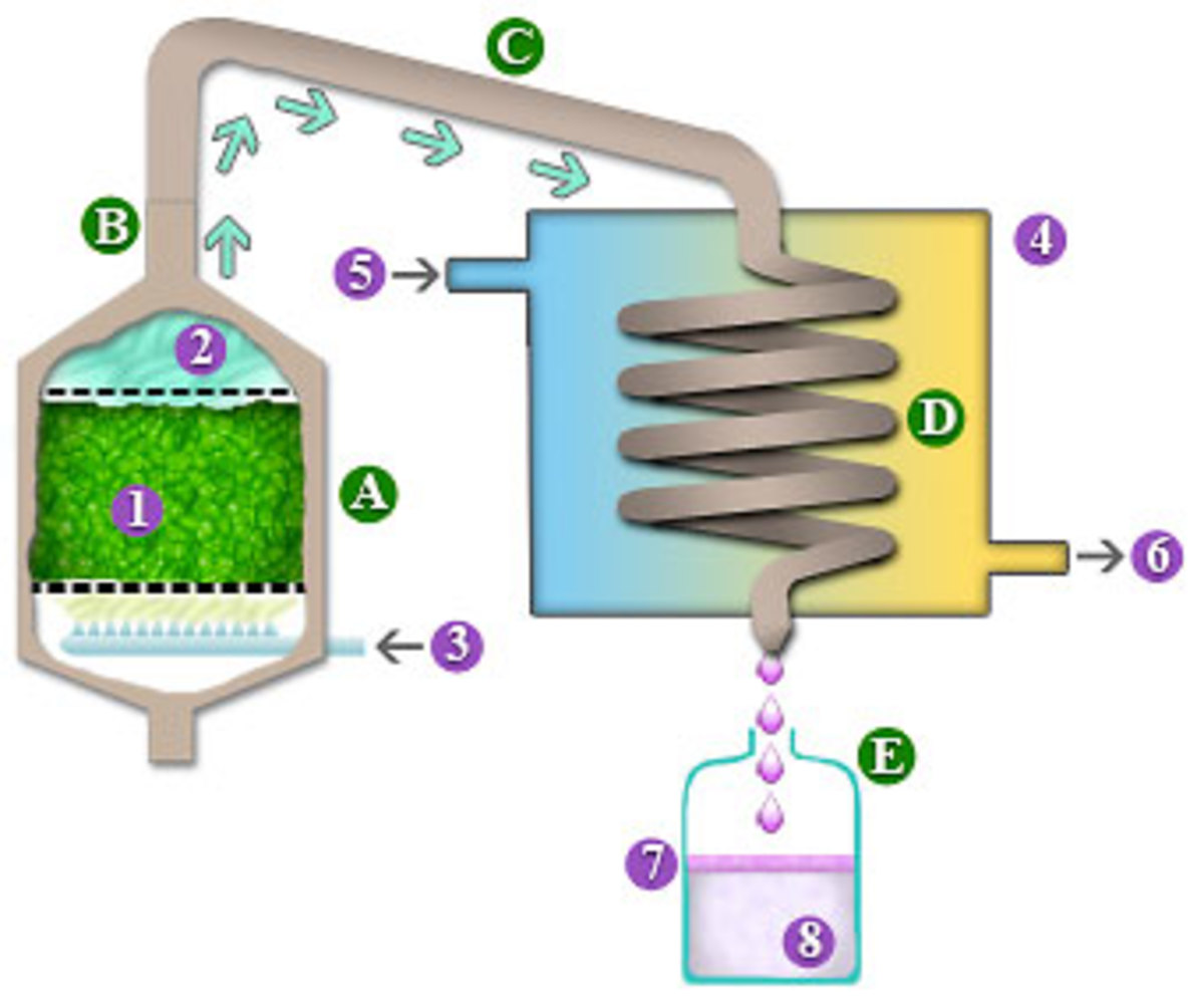 Essential Oil Distillation Oil