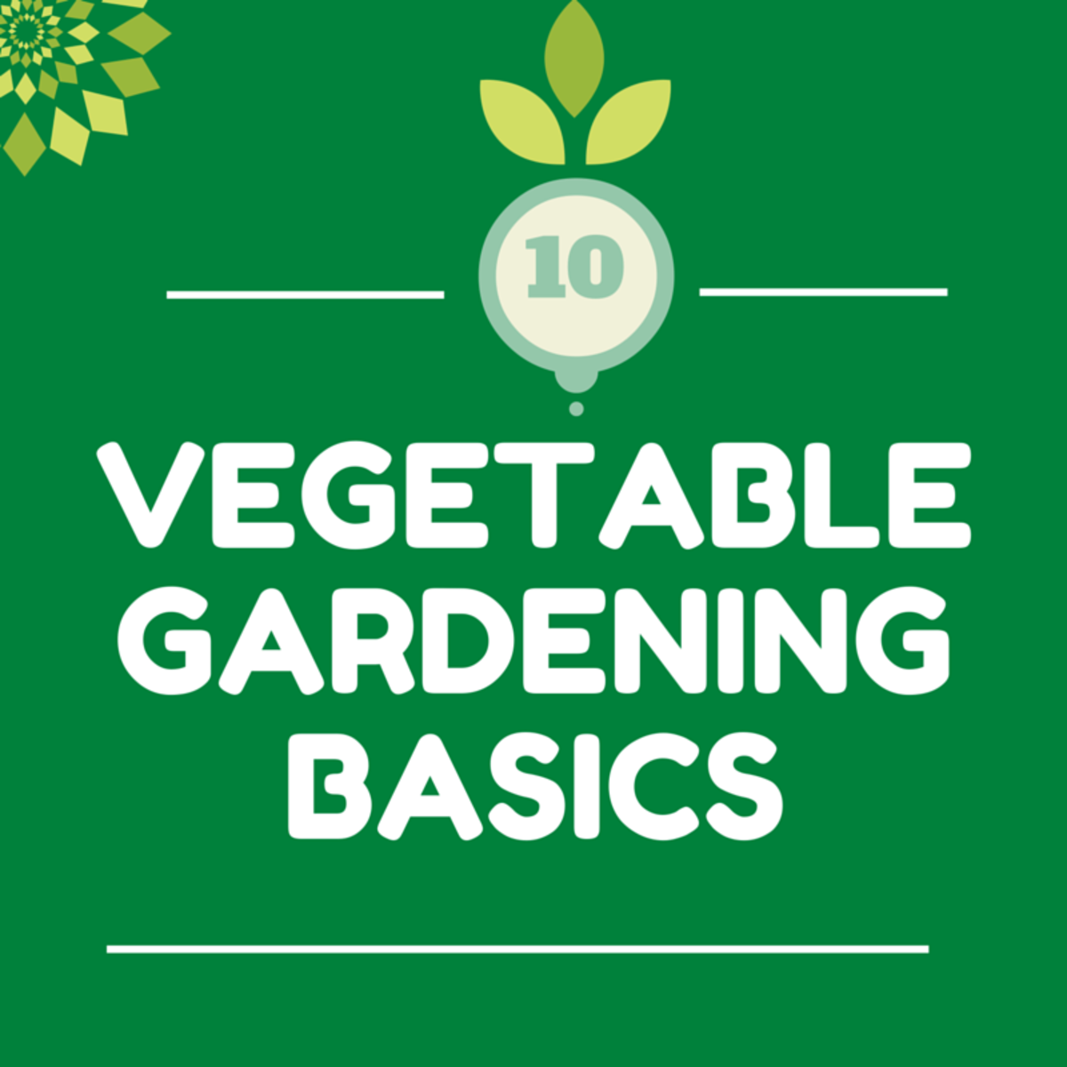 10 Vegetable Gardening Basics for Beginners