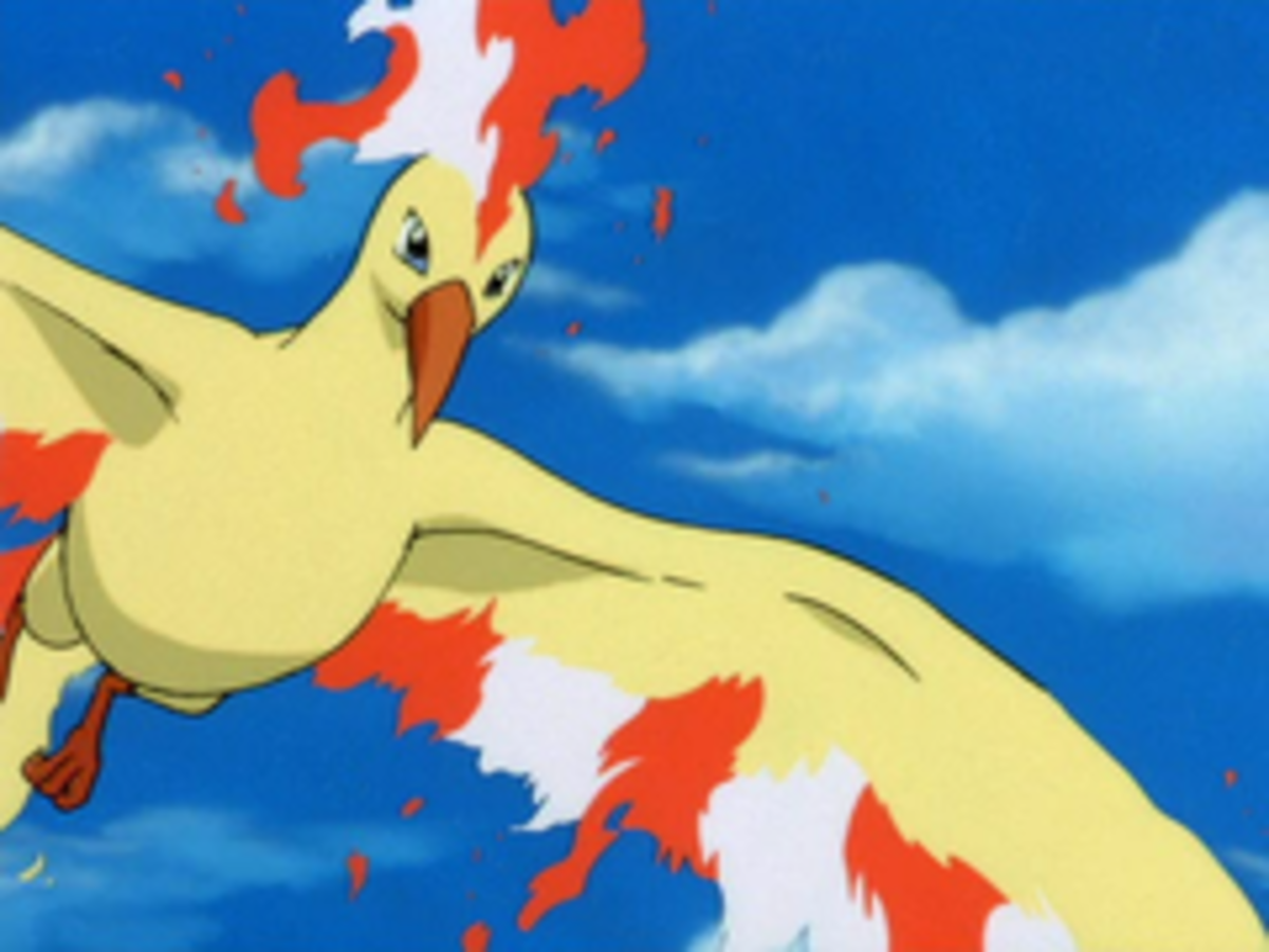 Moltres as seen in the Anime Series