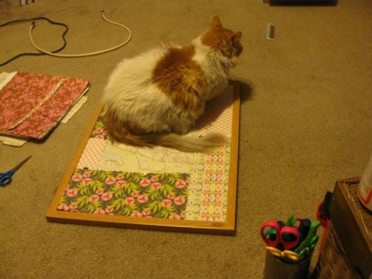 Scarlett helps me with my craft projects, whether I want her to or not.