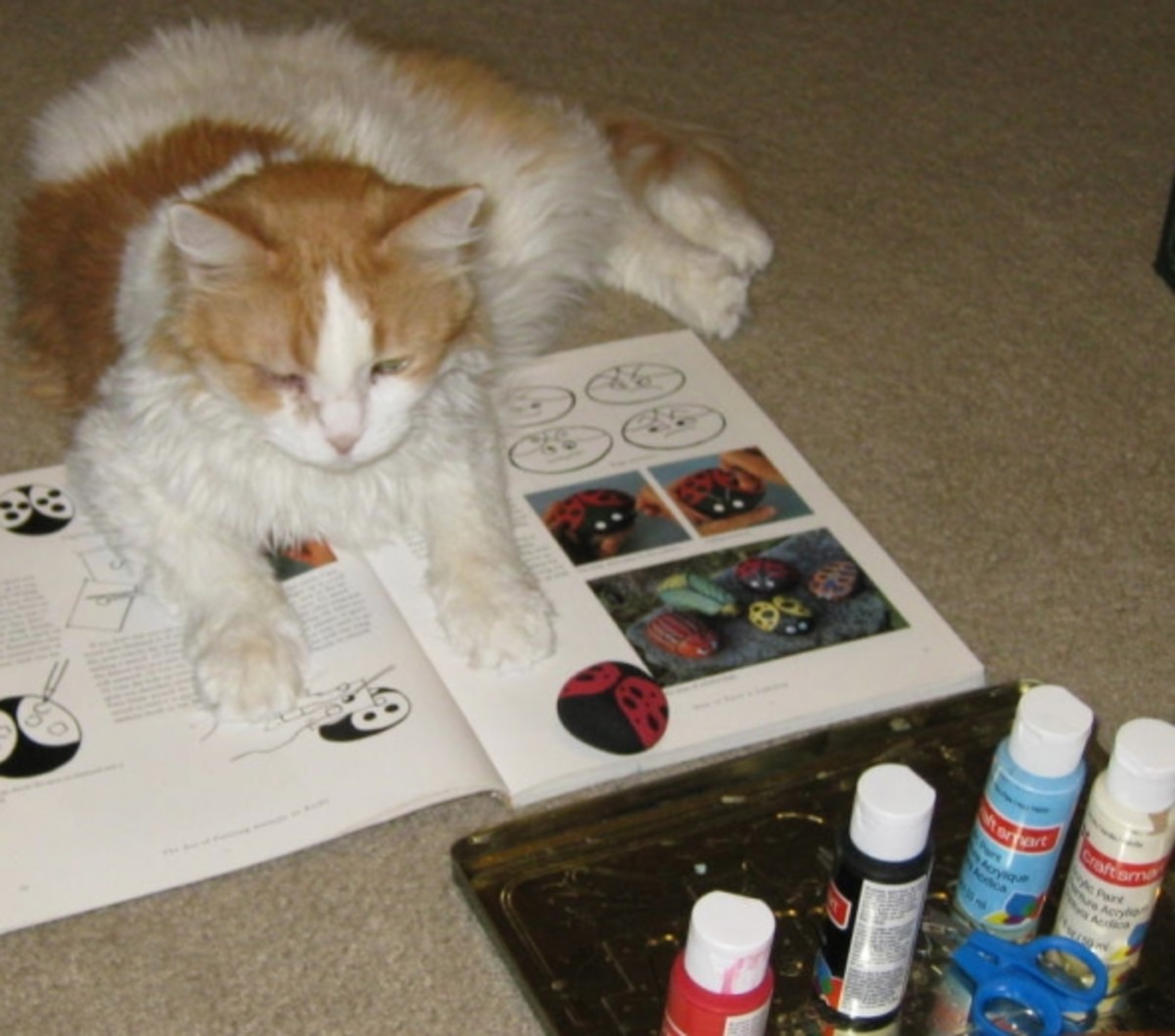 """Scarlett helping me paint a ladybug rock. Check out the lens """"Rock Painting -- How to Paint Rocks"""" listed in the Featured Lenses listed on the right side of this article."""
