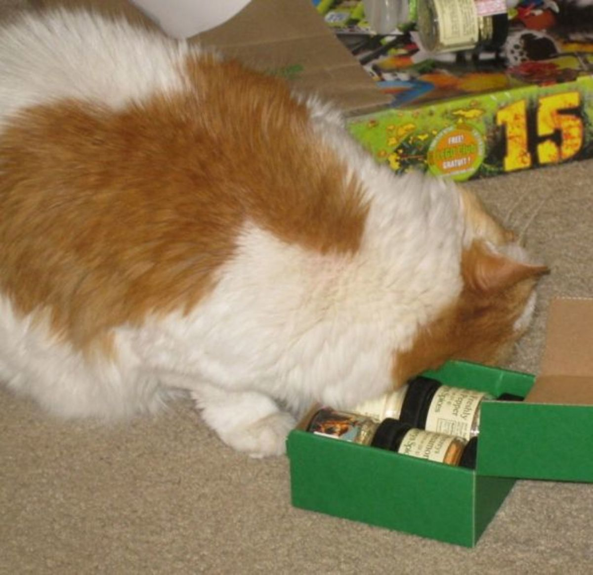 Scarlett loves some good spices. Here she is putting a whole new spin on spice rub. All photos here by Peggy Hazelwood.