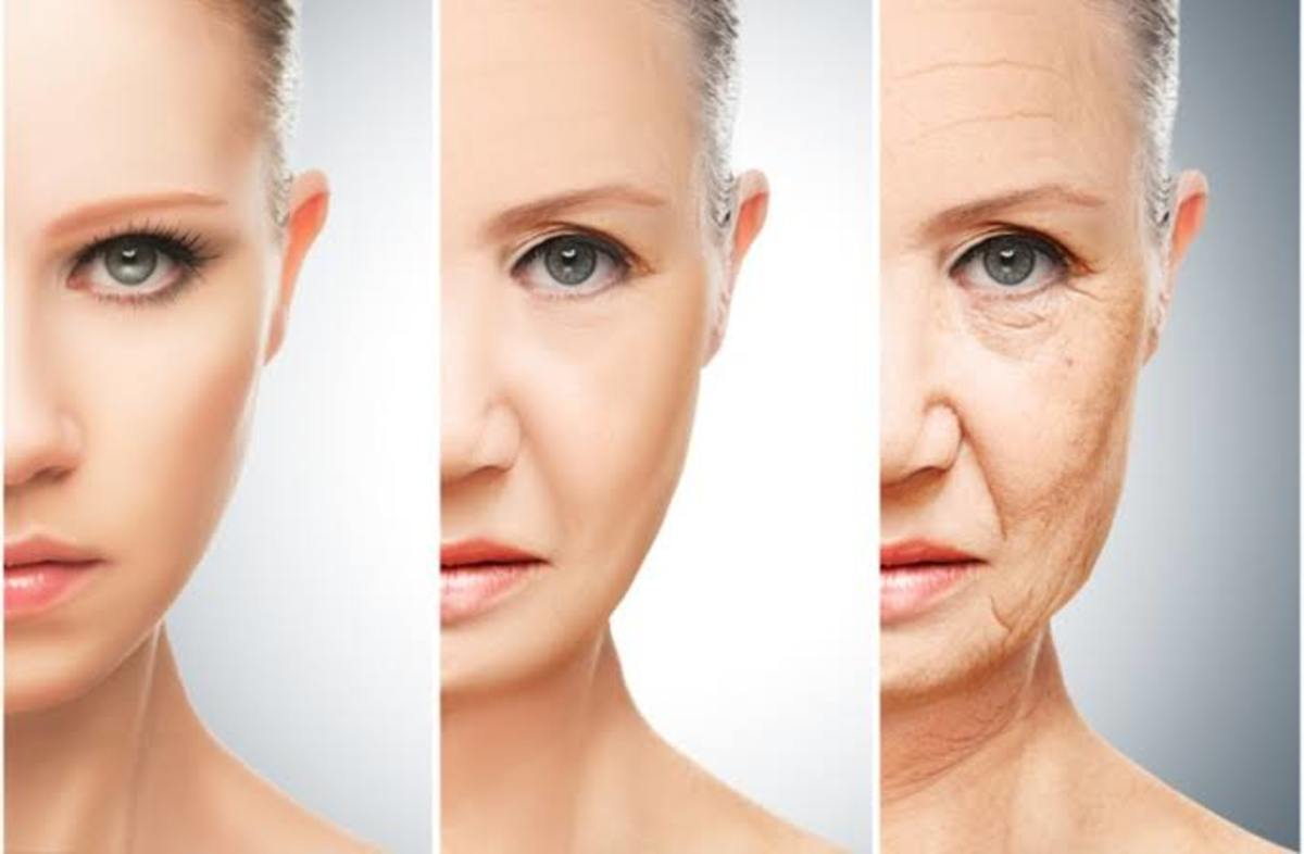 Collagen is very important