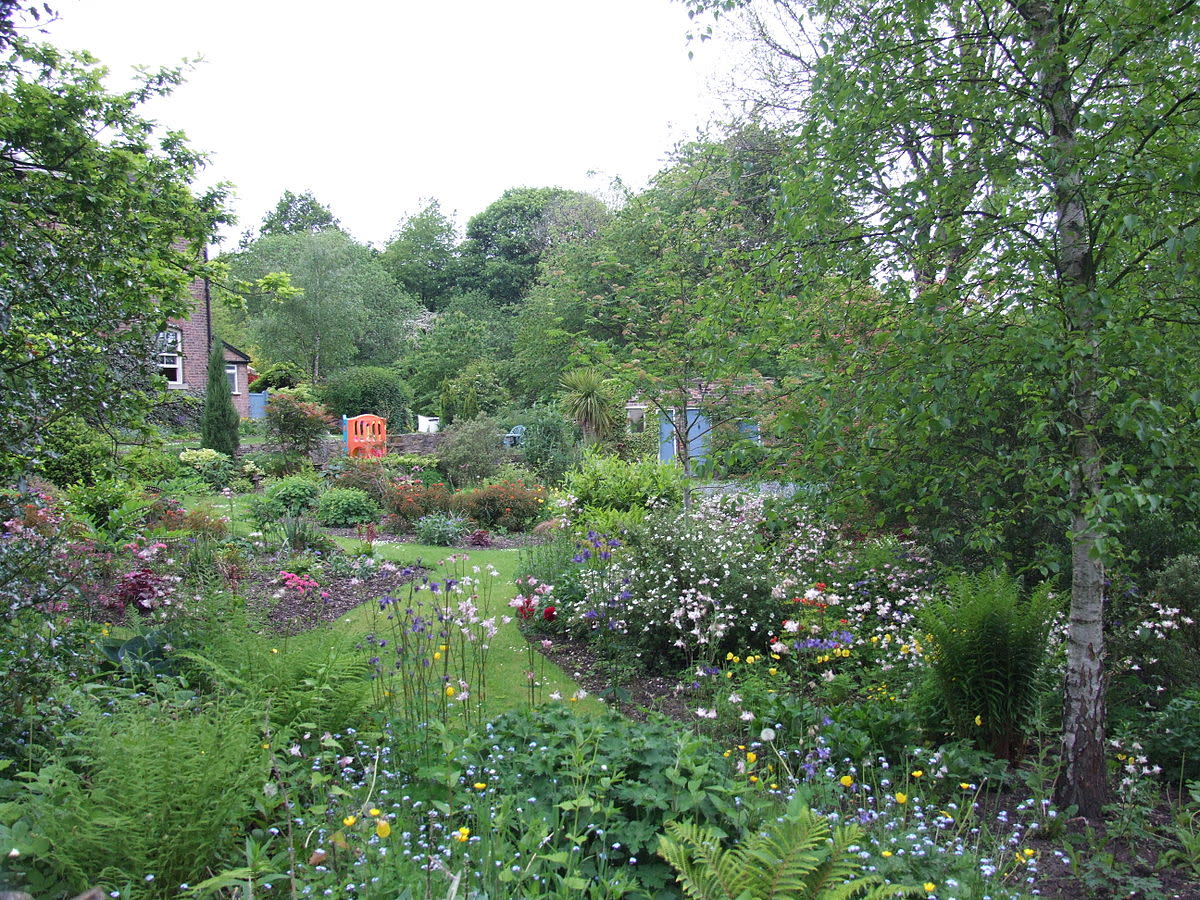 UK garden full of shrubs and flowers to attract songbirds.