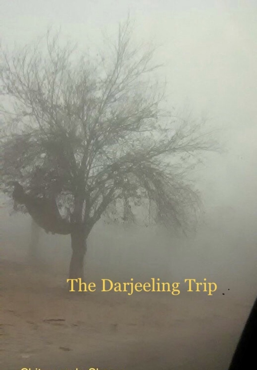 The Mystery of The Darjeeling Trip-Flash Fiction