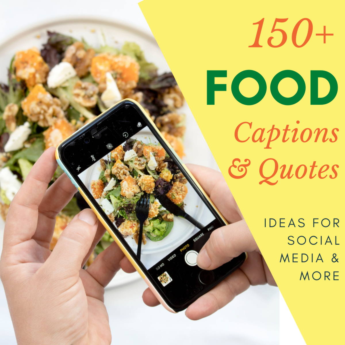 If you love to post pictures of your food, this guide may help you.