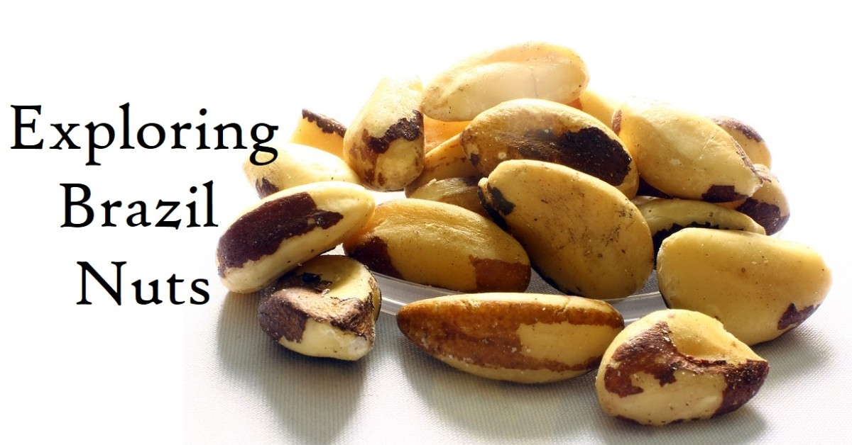 Brazil nuts have a unique flavor and texture