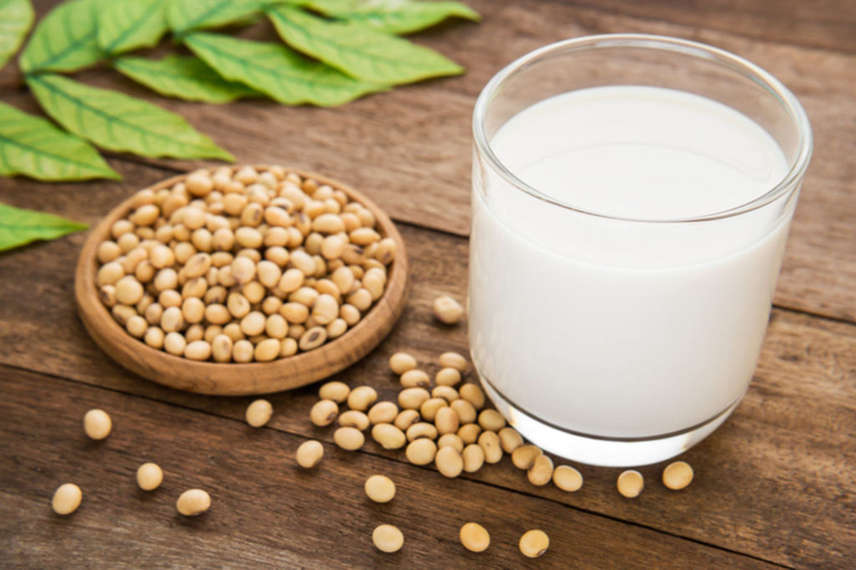 Soyabean is richer in protein content in comparison to it's other counterparts, such as milk