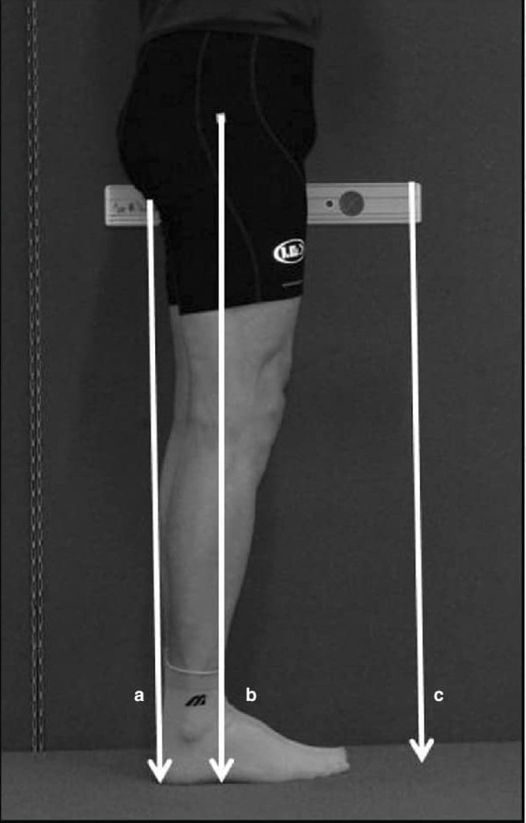 Here is an example of how leg reach is measured in the UFC. The right method is illustrated by line b. Note that it starts from the hip to the ground. The wrong way of measurement is inseam to ground as illustrated by line a and line c.