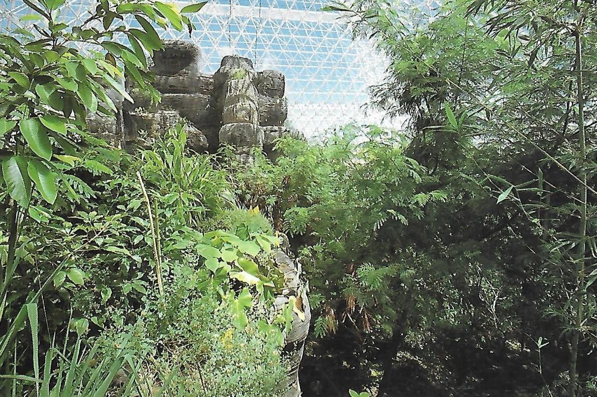 futuristic-or-folly-arizonas-biosphere-2-and-arcosanti