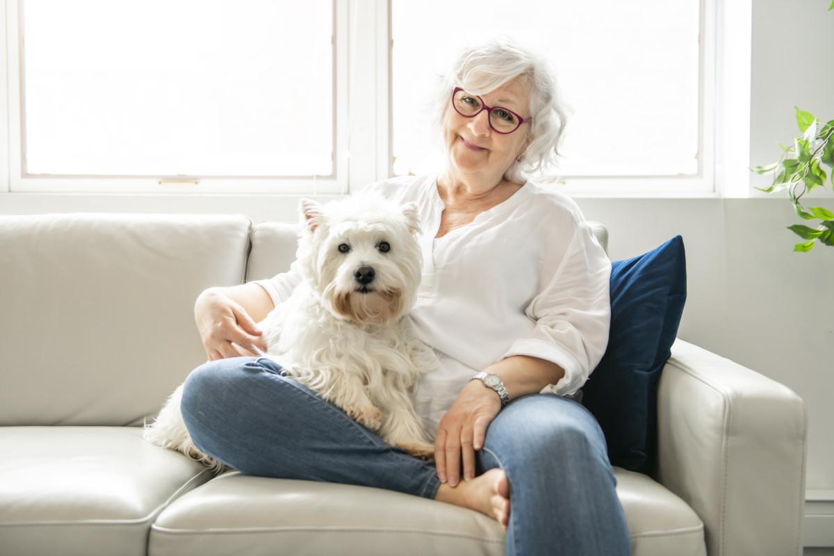 Dogs for Seniors