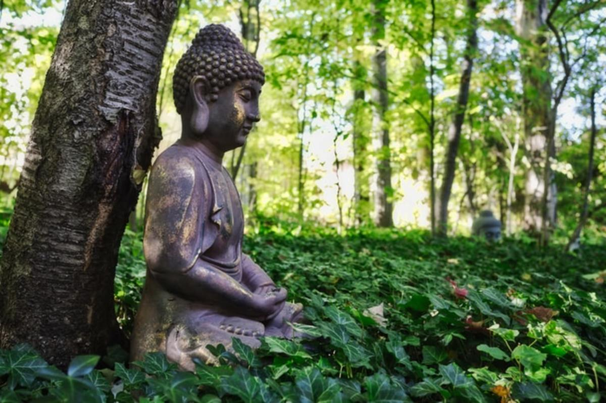 Buddhist Tenets to Combat Environmental Problems