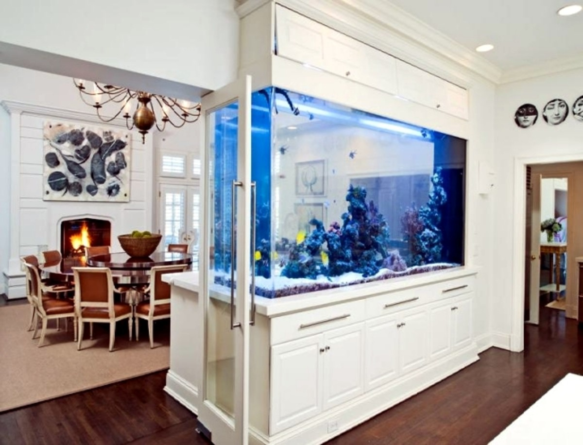 No Pisces living room is complete without a fish tank.
