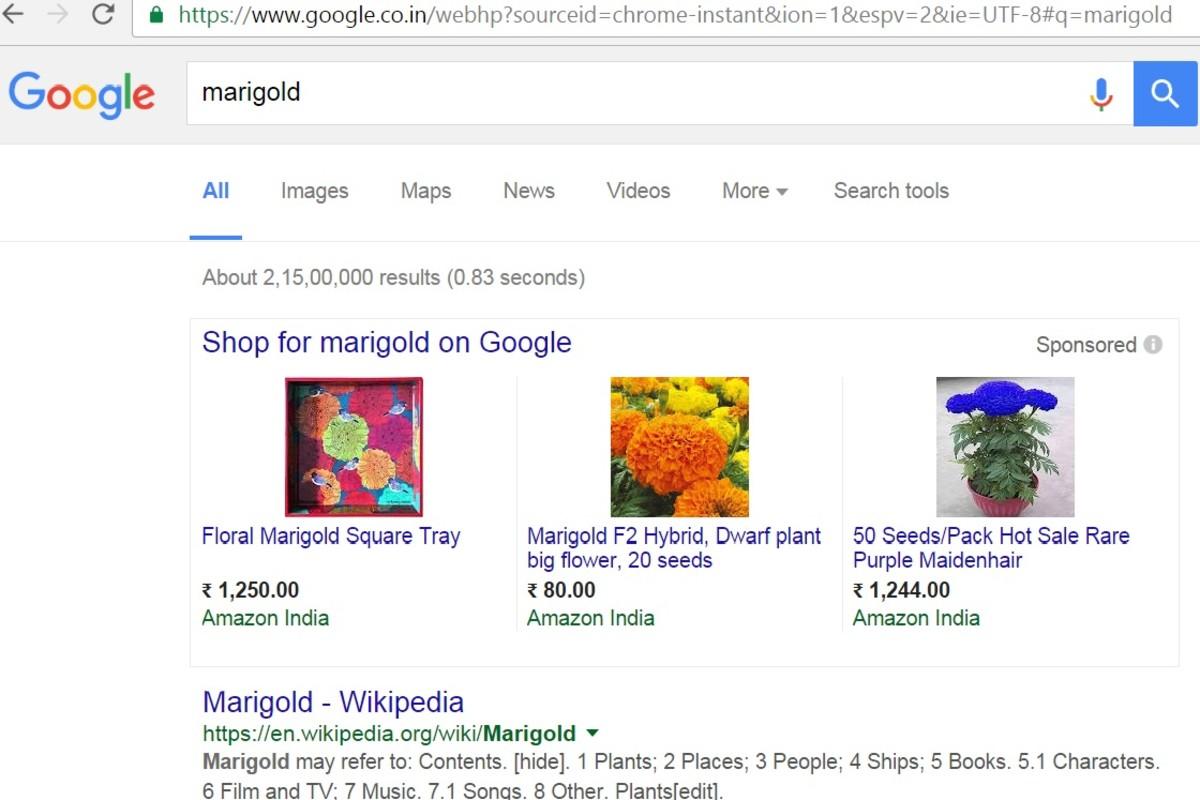google search facility