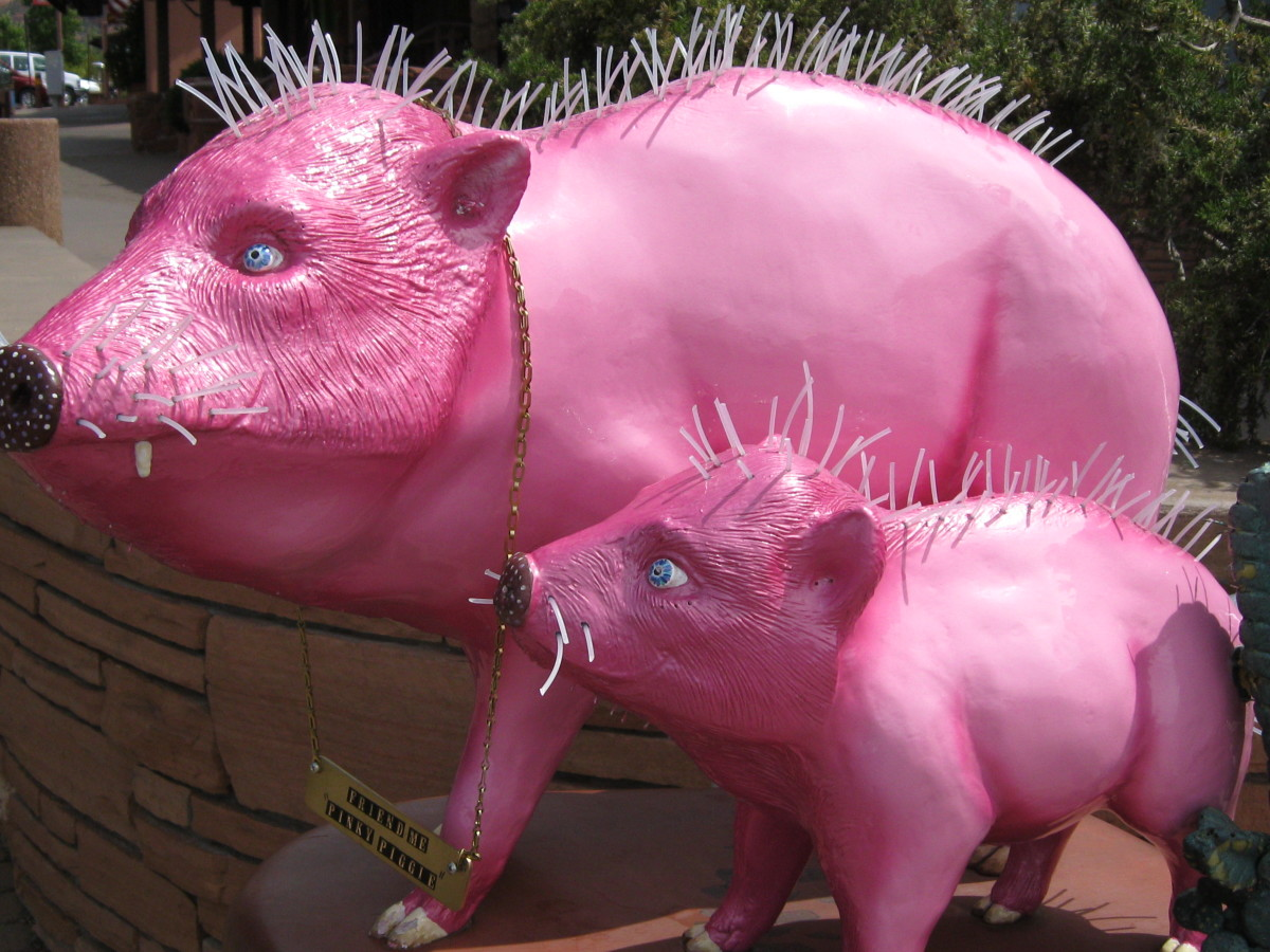 Artist decorated Pink Javalinas for the Pink Jeep Rides Company of Sedona.