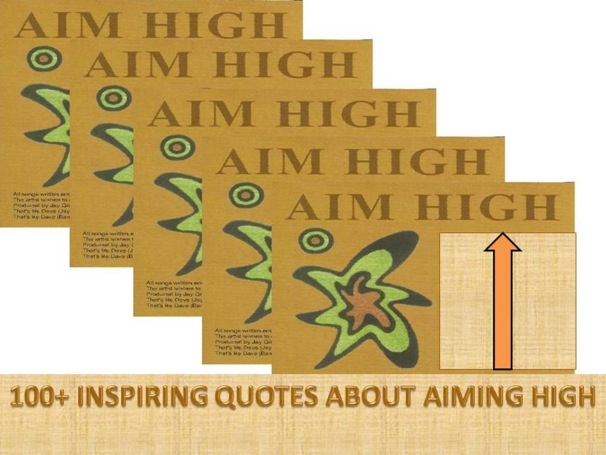 my-lifes-aim-essay