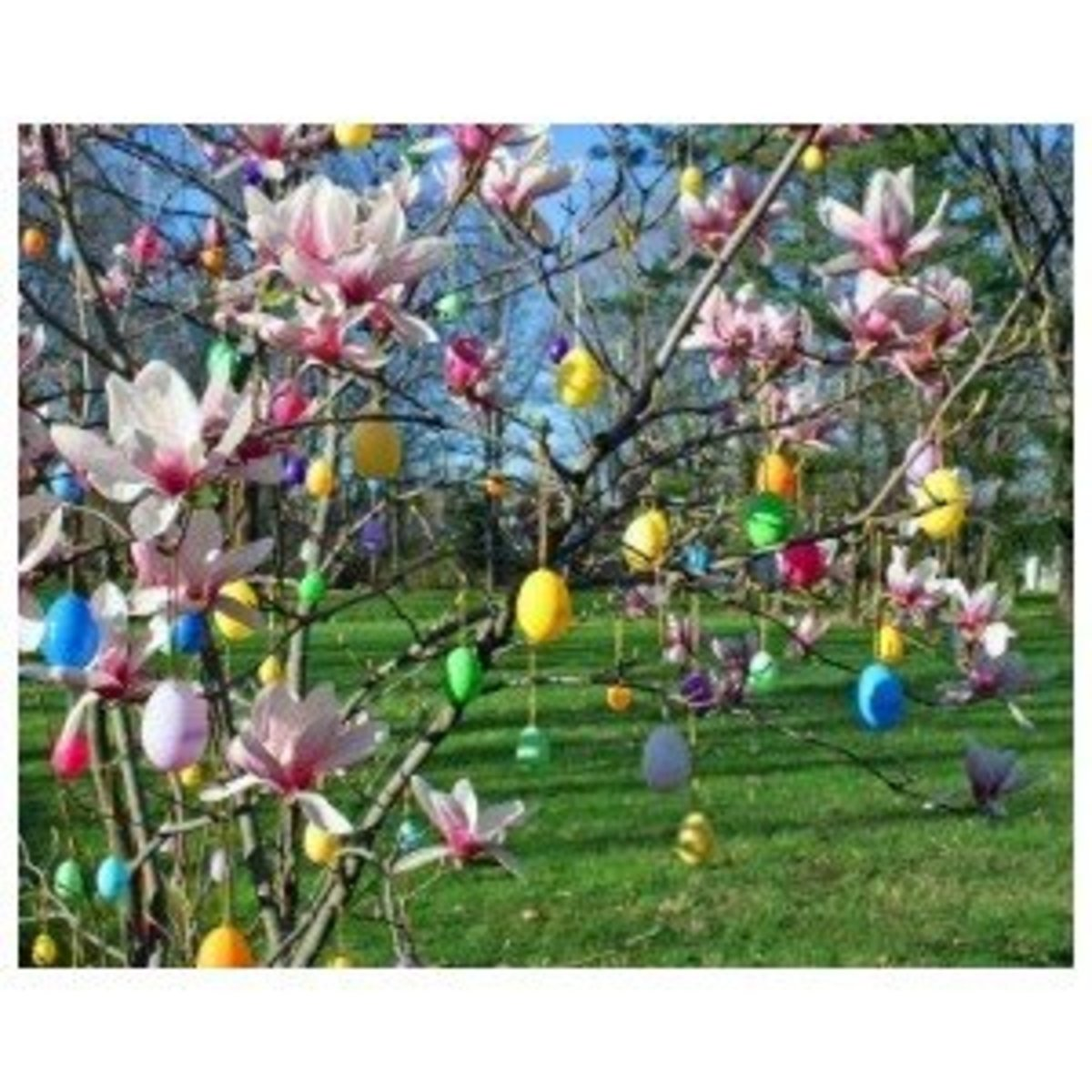 Colorful Exterior Easter Decorations on a Magnolia Tree just beginning to bud