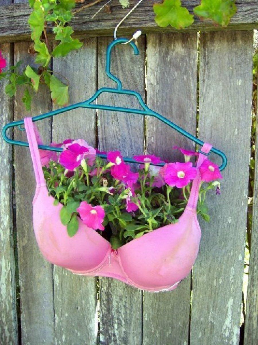 Hot Pink Bra for a Easter Basket