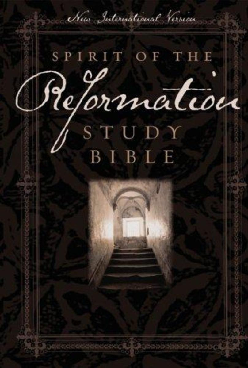 THE SPIRIT OF THE REFORMATION STUDY BIBLE (MY FAVORITE BIBLE IN MODERN ENGLISH [NEW INTERNATIONAL VERSION])