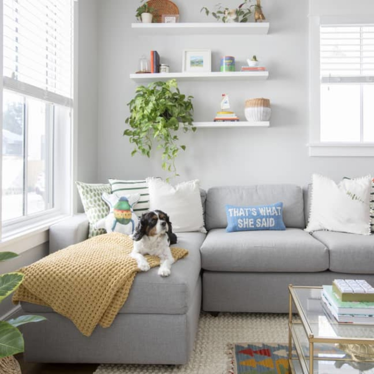 The pets and kids in the sofa cushions that are durable fabric.