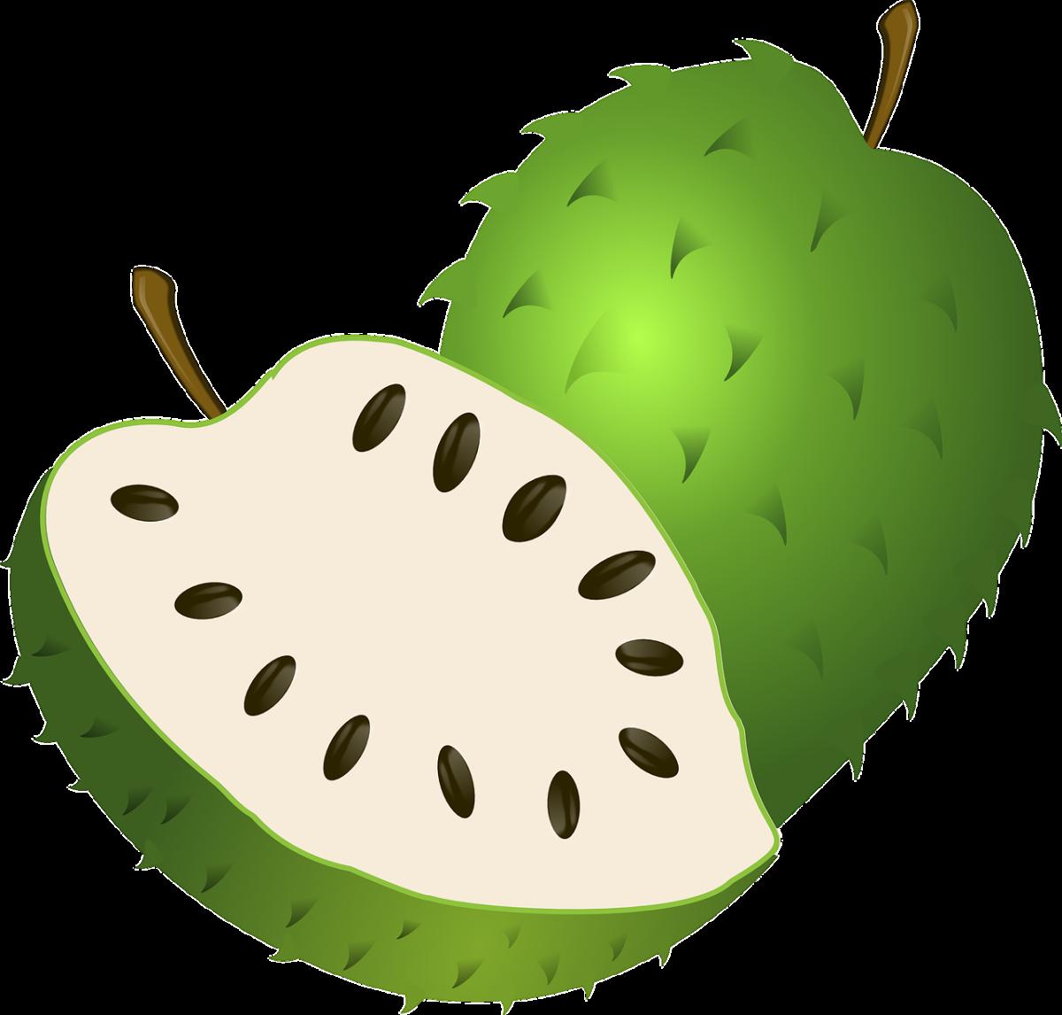 health-benefits-of-guyabano-soursop-leaves