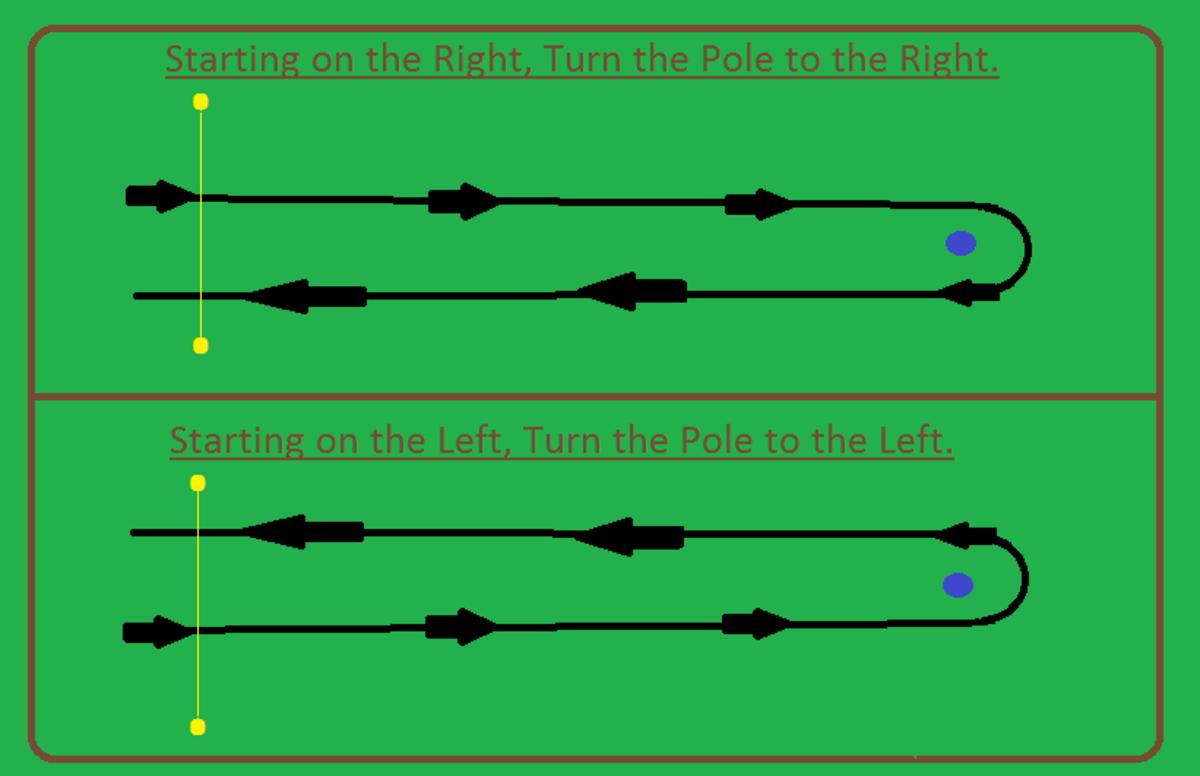 Single Stake Race