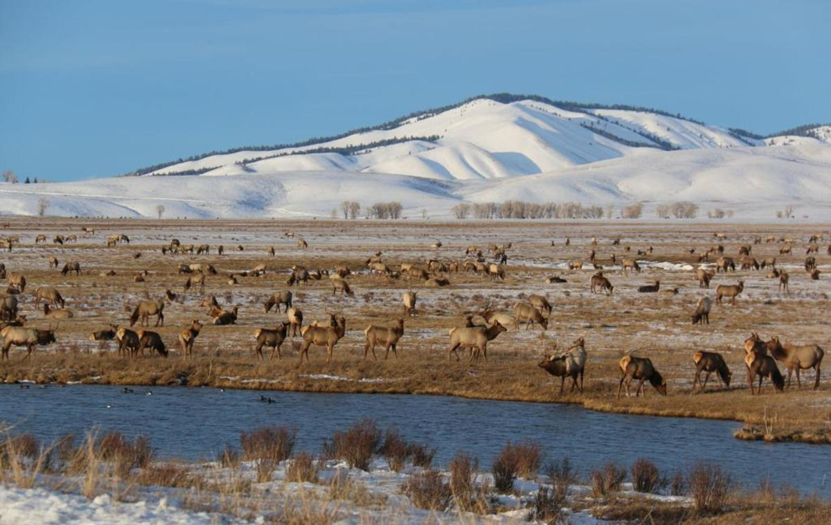 best-tourist-attractions-in-wyoming