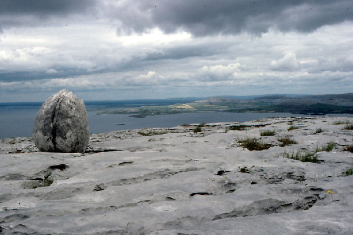 An 'erratic'--an isolated boulder, mineralogically out-of-place, that is the 'calling card' of glaciation past.  Image by Dr. Charles Nelson.