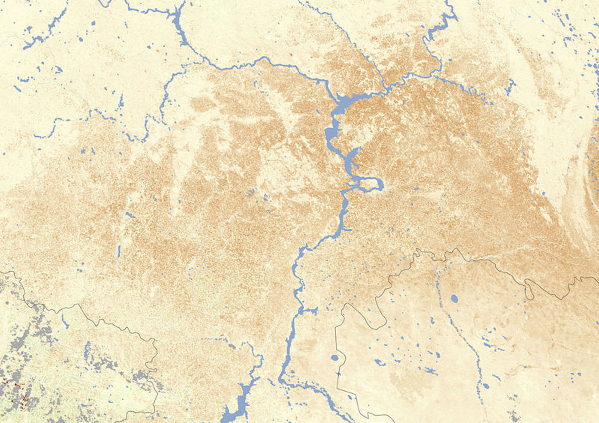 NASA Earth Observatory satellite image of drought in Southern Russia, July 2010.  Average photosynthesis is coded cream; deeper tones show drought stress.  Above average photosynthesis would show in green.
