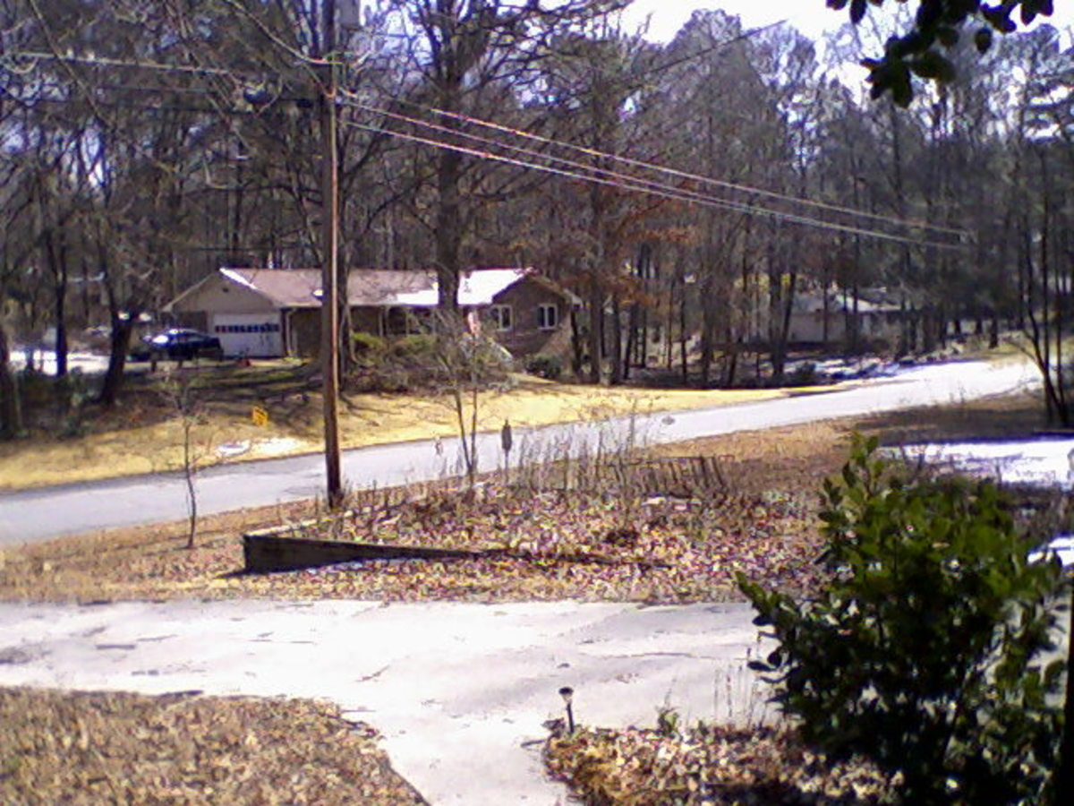 View across street, about 11:30 AM on February 10, 2011.  Photo by author.