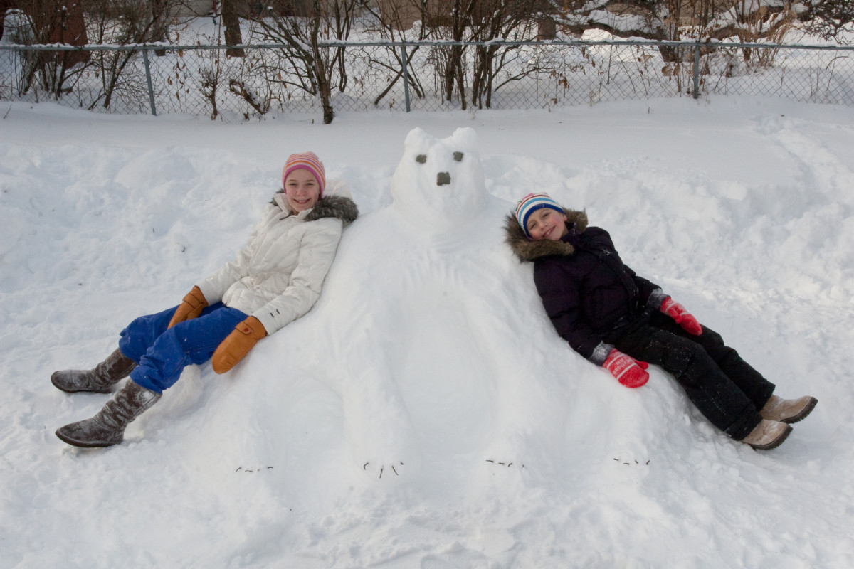 Snow Animals in your Backyard
