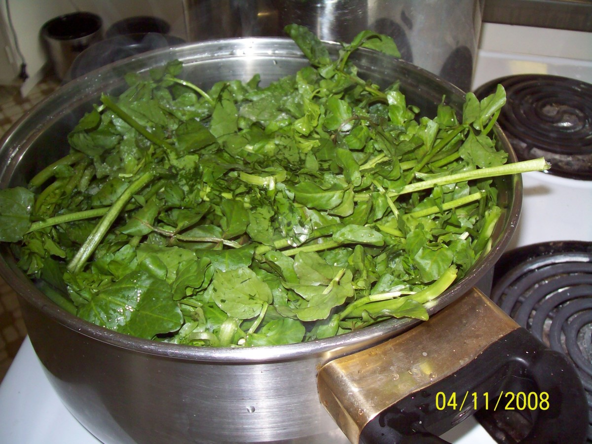 Watercress reduced after 10 minutes boiling