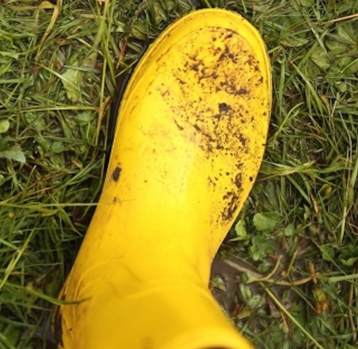 the-yellow-rainboot