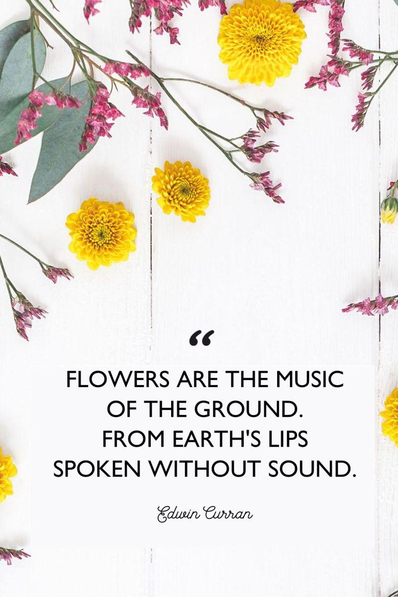 flowers-poem