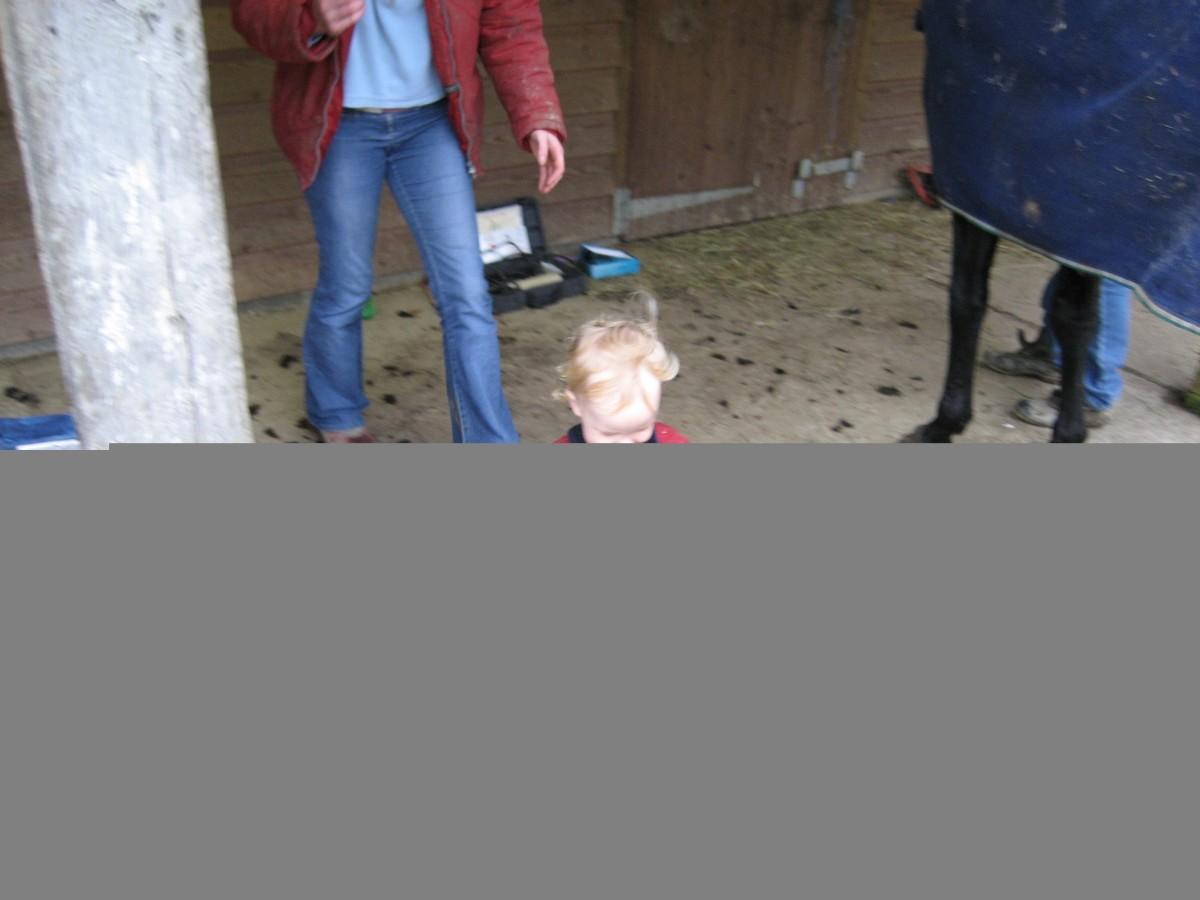 Enjoying the horses, with his Auntie Eleanor