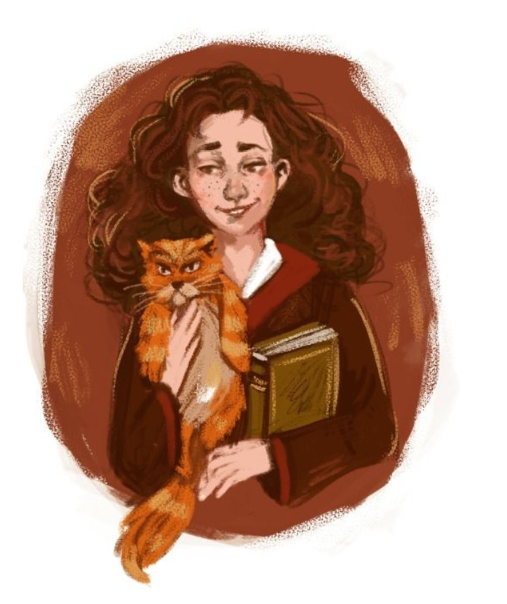 why-does-harry-never-fall-in-love-with-hermione