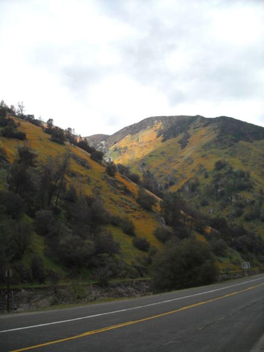 wild-merced-river-canyon