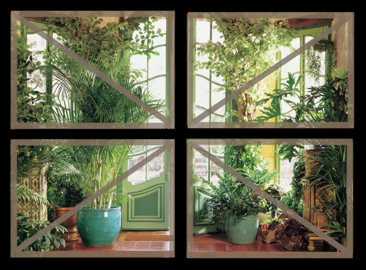 """Figure 3. Wall Photomural Divided into Four Removable Panels Showing the Underlying 1""""x3"""" Frames"""