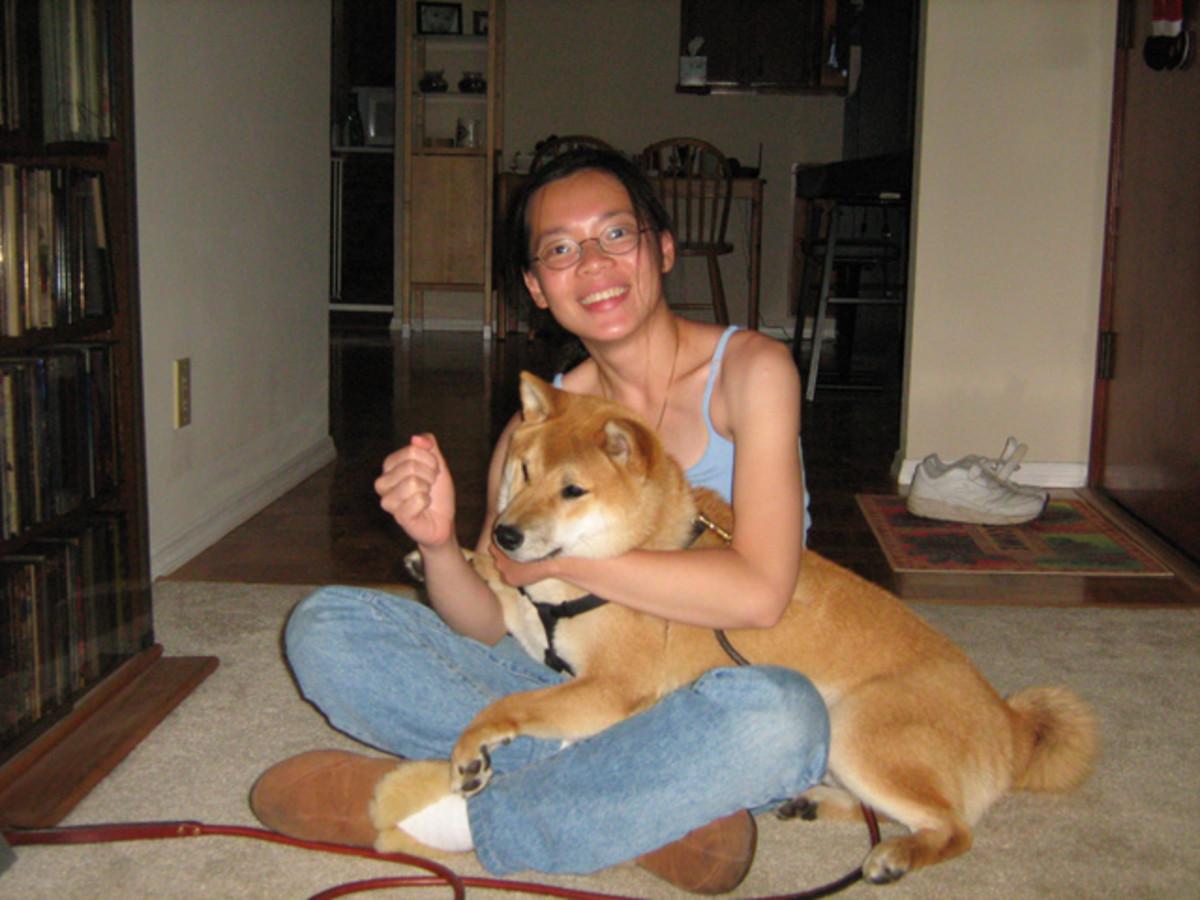 3. Puppy Care