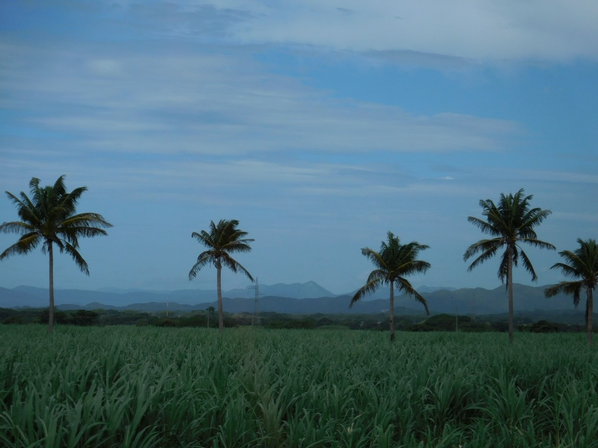 3 Excursions in Costa Rica You Don't Want to Miss Out On