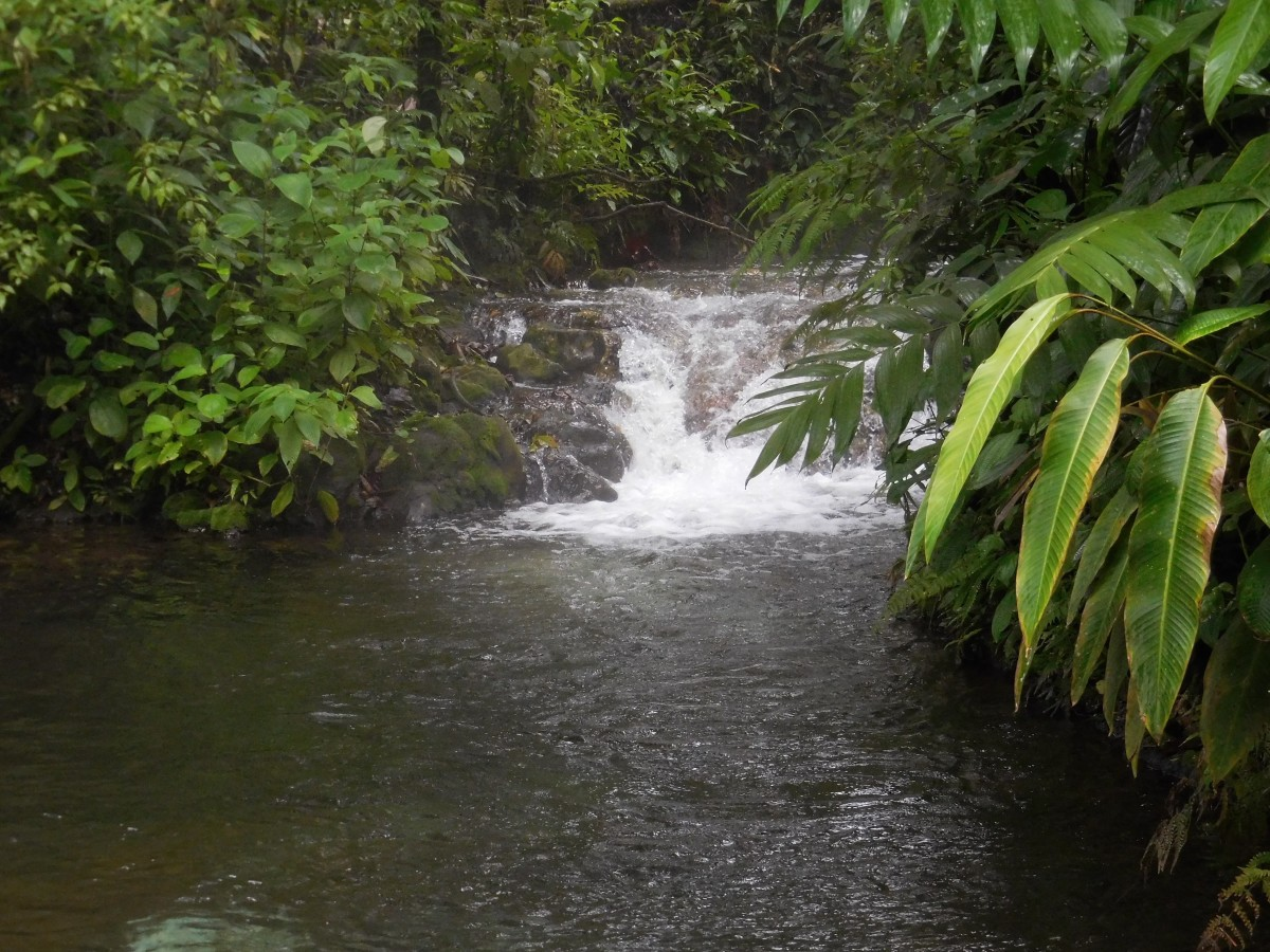 Hot spring naturally heated by the active Arenal volcano.