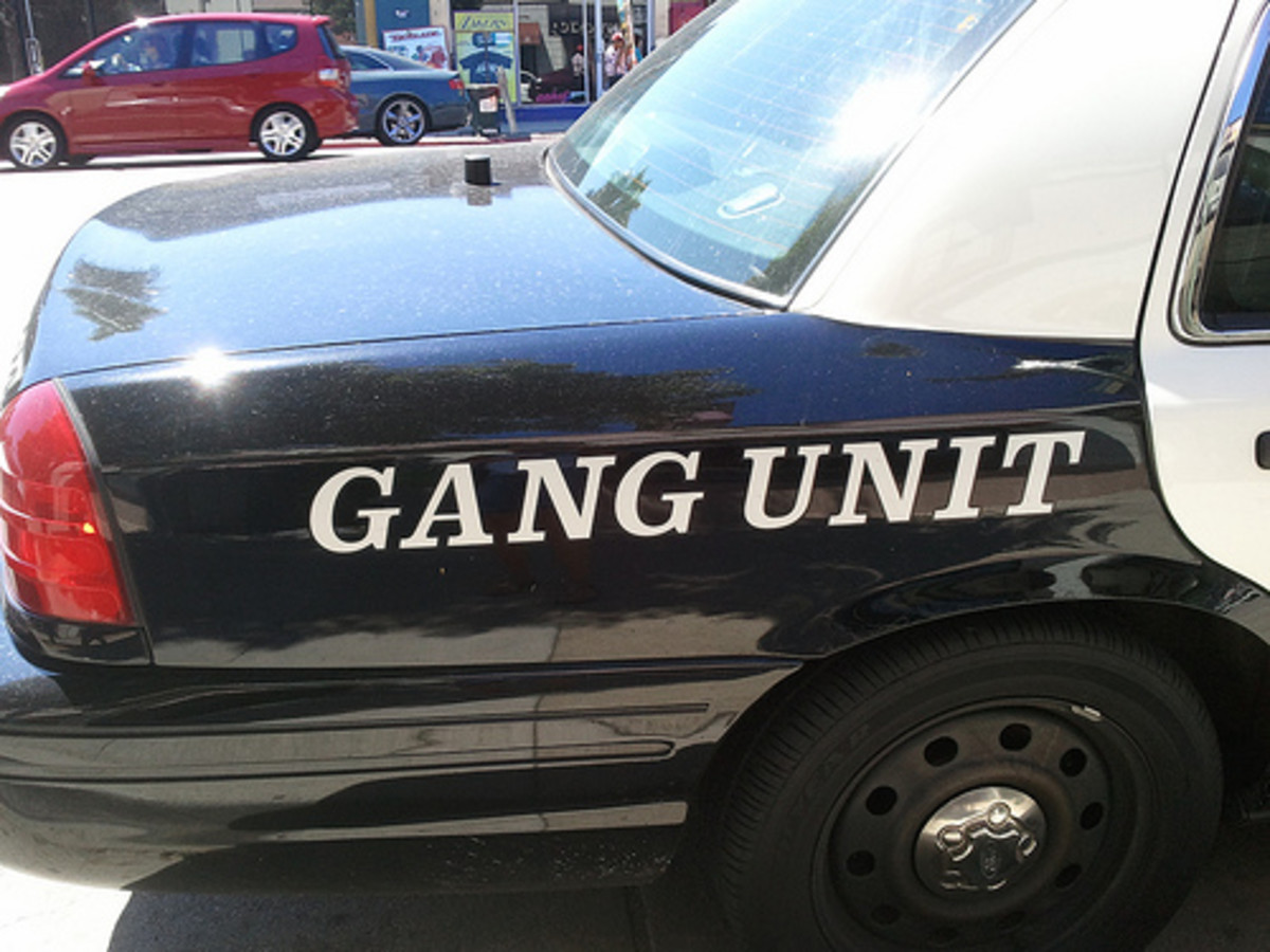 Chicago Gangs: Basic Education for Parents, Teachers and Community Members