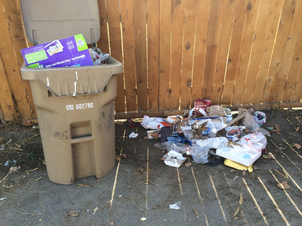 My neighbors excessive trash on my side of the alleyway.