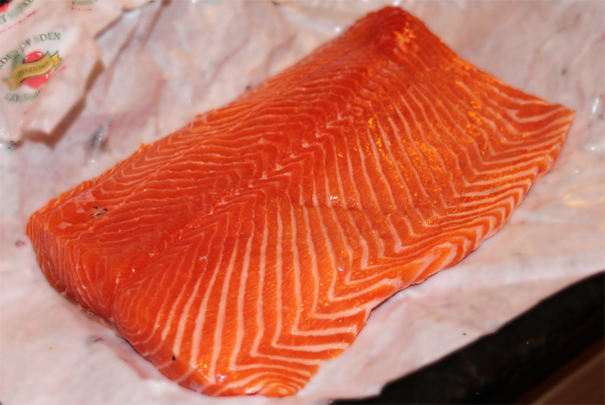A farm raised salmon filet.