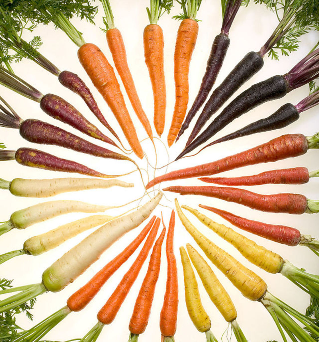 Carrots are available in many colours.