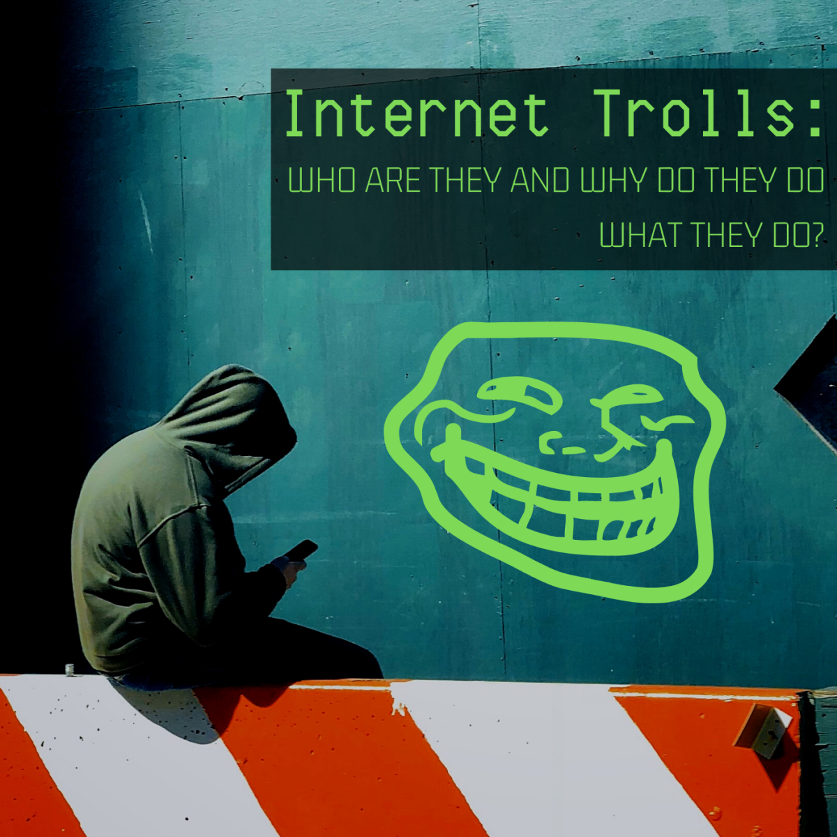 Why do folks bully others on the web?