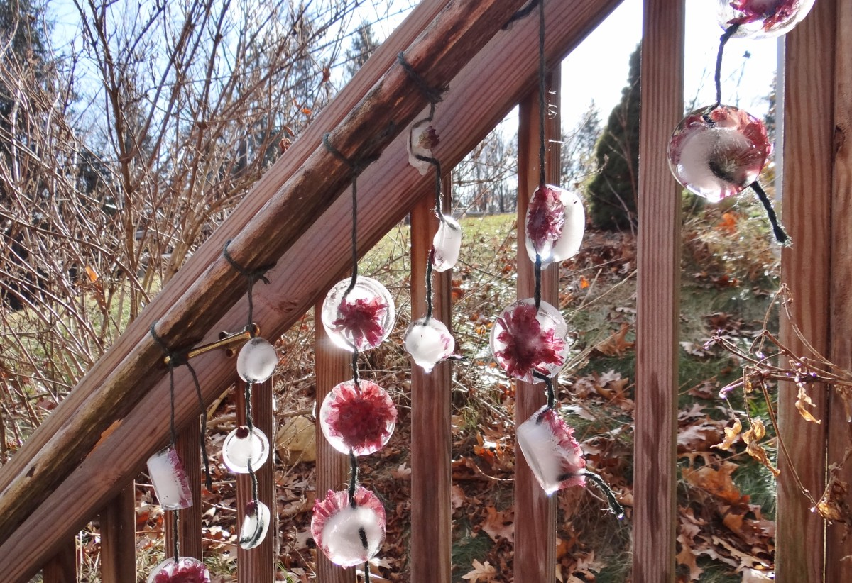 Dressing up the winter landscape with Ice Ornaments.